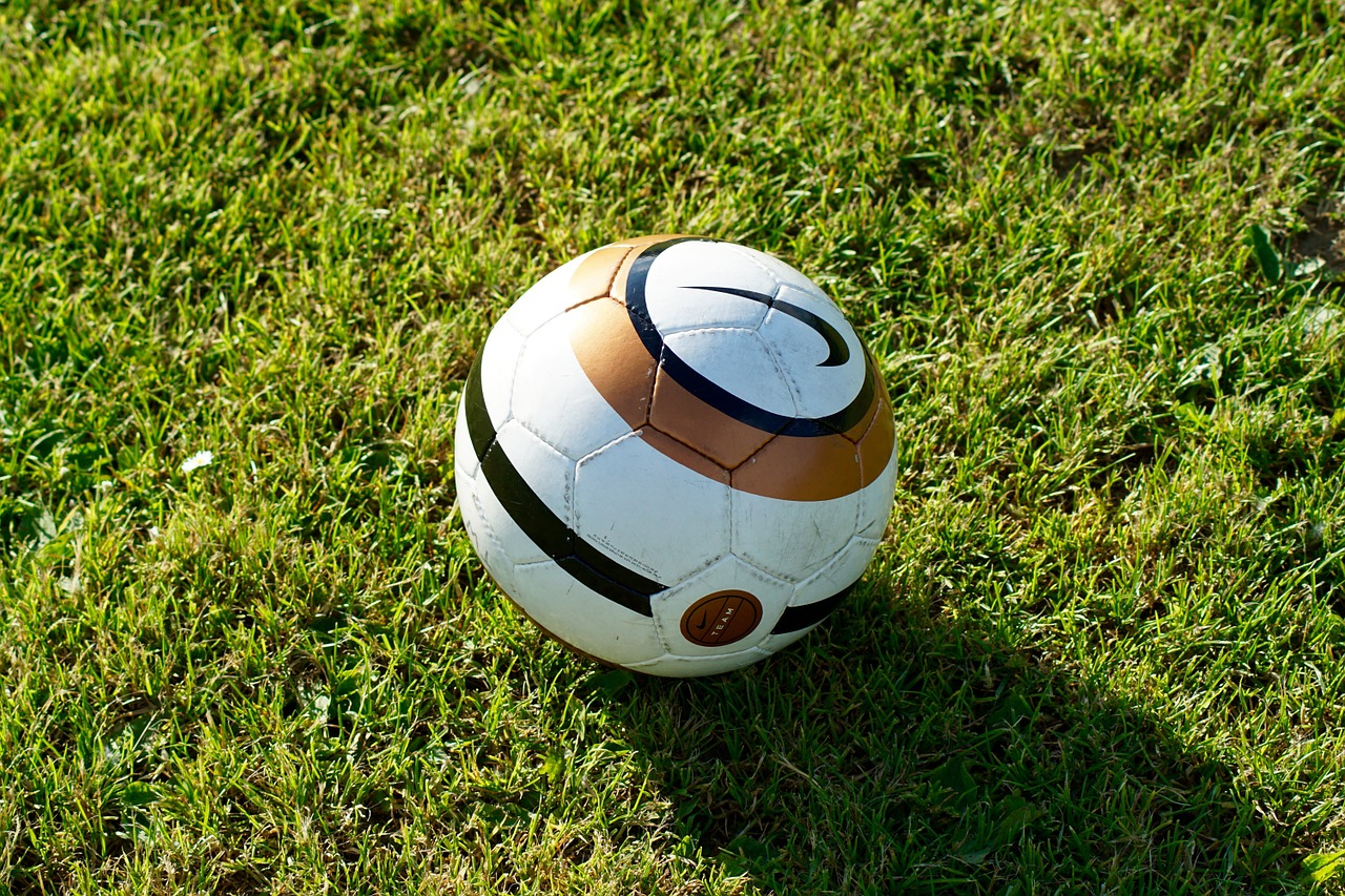 Footgolf Course Football Soccer Size 5 Ball