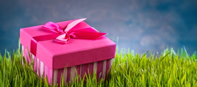 Footgolf Gift Vouchers – The Ideal Present!